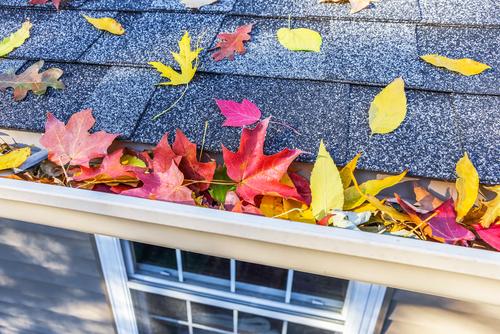 Algonquin Roof Repair Alsip Roof Repair Antioch Roof